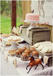 Ideas for a girlish horse party