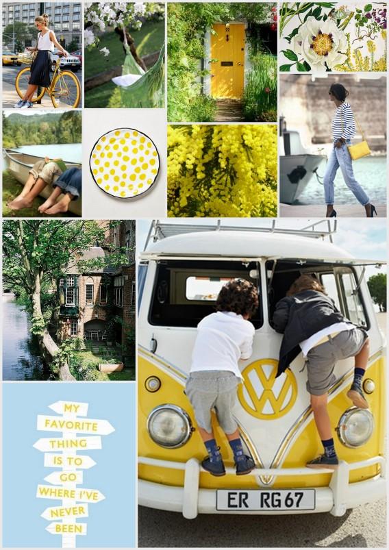 inspirational board spring, mimosas, yellow, sunny
