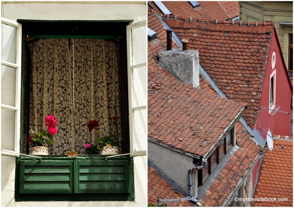 roofs of Zagreb and flowers in spring