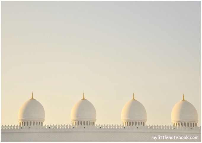 the best of abu dhabi for visitors, the mosque