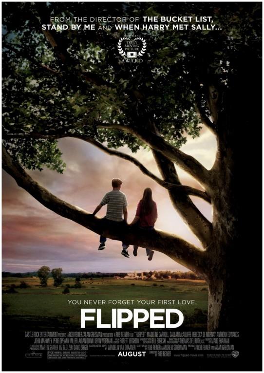 Romantic movie Flipped