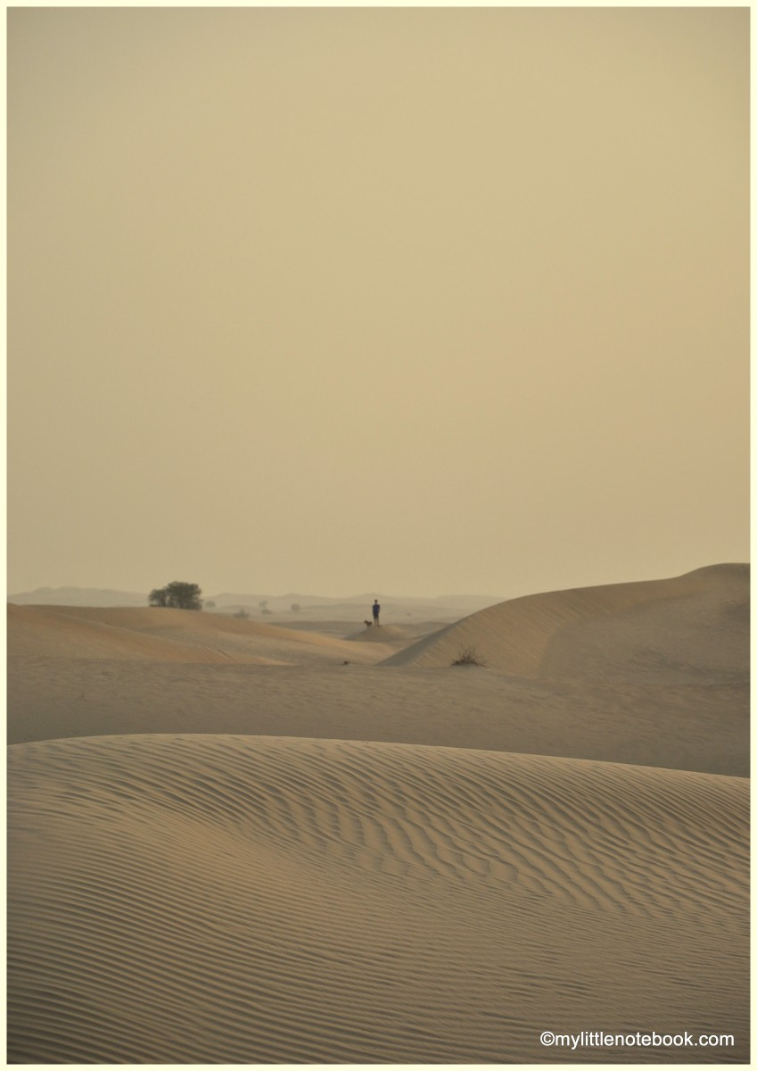 travel my little notebook travel travel photography a photo essay on a desert