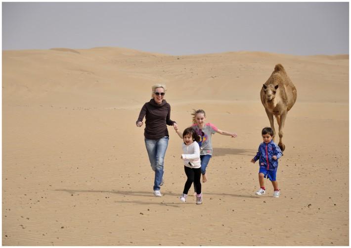 uae desert adventure