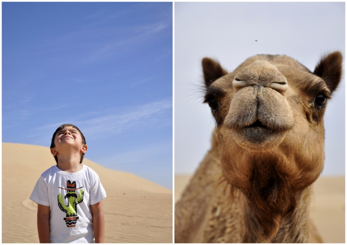 portrait of a boy and a camel