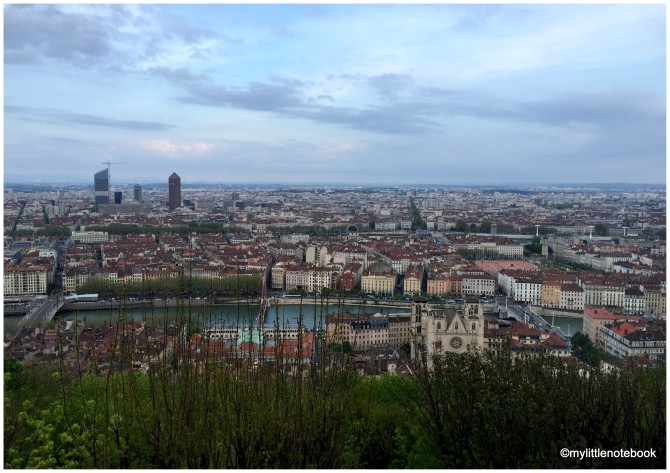 beautiful view over Lyon and river Rhone