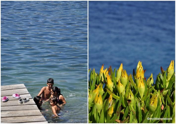 mediterranean coast, Croatia