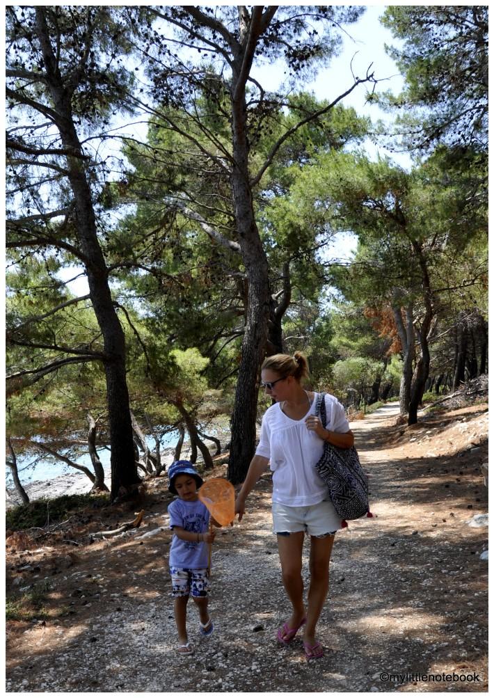 discover island badija in croatia