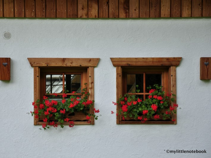 slovenian house