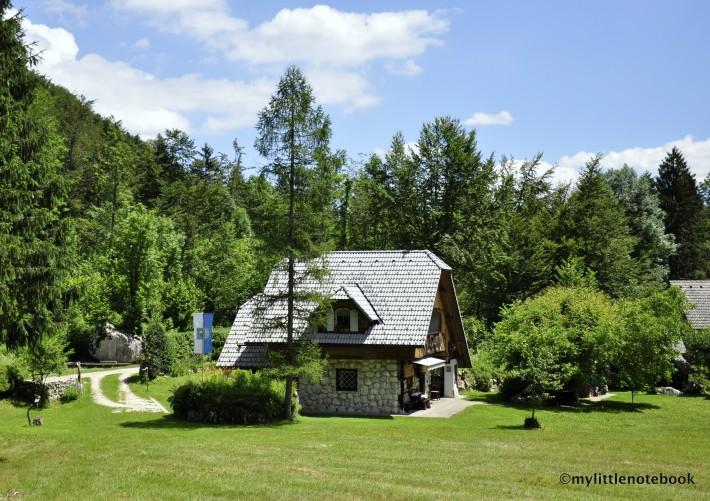 house in slovenia